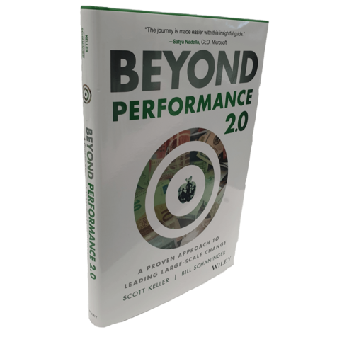 Beyond Performance: How Great Organizations Build Ultimate ...